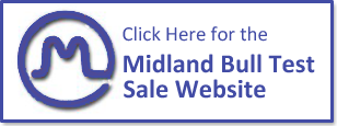 Midland Bull Test Sales Page