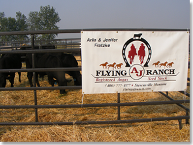 WMAA Tour Stop 2012, Flying AJ Ranch, Registered Angus Seed Stock
