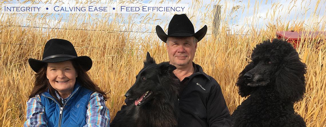 Registered Black Angus Breeders - Stevensville, MT